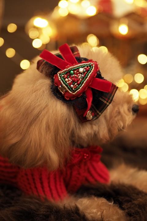 La Coiffe de Noël